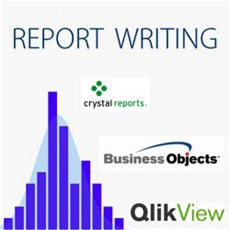 Internship Report and Reflexive Essay Xerxa Bardh